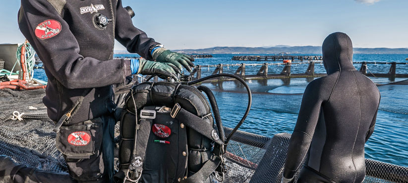 DiveSystem Professional Supplies: Aquaculture and Fishing industry